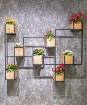 Begonia in wooden pots on a metal profile shelf