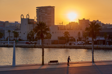Stunning views of the waterfront at sunset