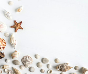 Wooden background white with shells. Frame with seashells on a white background. Sea background