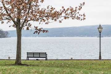 bench on the lake