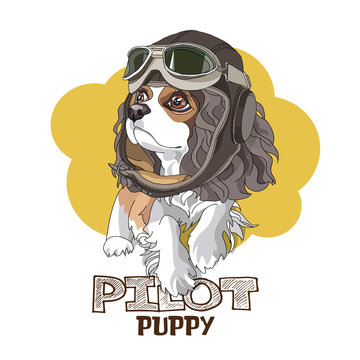 Puppy Cavalier King Charles Spaniel in a leather pilot hat on a yellow background. Vector illustration.