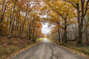 Travel into the autumn season