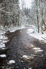 Frozen river in the snow-covered forest on a cloudy winter day. Lahemaa national park, Estonia