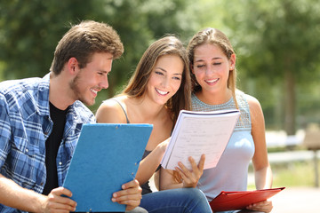 Three students studying together in a campus park
