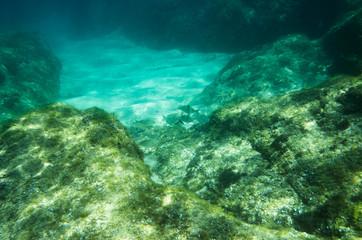 Underwater landscape in the Mediterranean