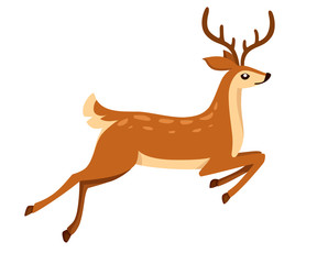 Brown deer run and jump. Hoofed ruminant mammals. Cartoon animal design. Cute deer with antlers. Flat vector illustration isolated on white background