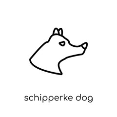 Schipperke dog icon. Trendy modern flat linear vector Schipperke dog icon on white background from thin line dogs collection