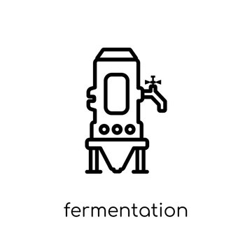 Fermentation icon from Drinks collection.