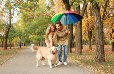 Young couple with umbrella and dog walking in park