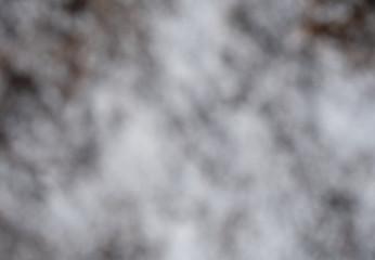 Nature fog blurred