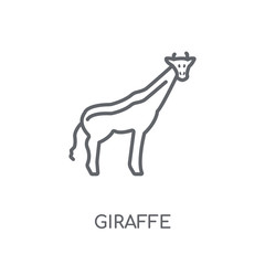 Giraffe linear icon. Modern outline Giraffe logo concept on white background from animals collection