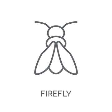 Firefly linear icon. Modern outline Firefly logo concept on white background from animals collection