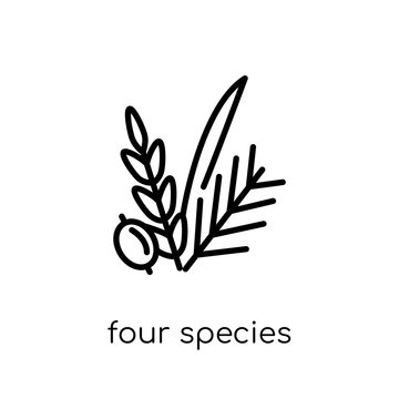 Four Species icon. Trendy modern flat linear vector Four Species icon on white background from thin line Religion collection