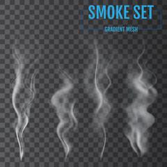 Delicate white cigarette smoke waves on transparent background. Vector illustration