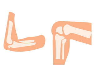 vector human knee and foot leg and hands arms in a bent