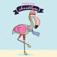 flamingo in winter warm sweater and winter greeting card