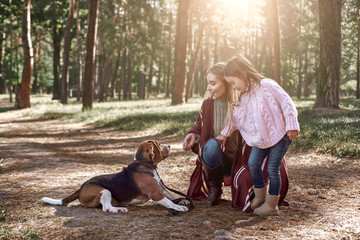 Mother and daughter with dog walking in pine forest