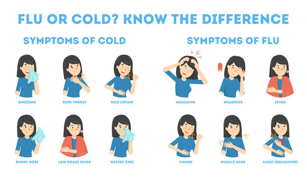 Cold and flu symptoms infographic. Fever and cough