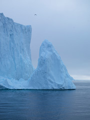 Arctic Icebergs on the Arctic Ocean in Greenland