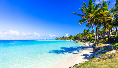 Photo Blinds Beach amazing tropical beach scenery. Mauritius island, Bel mare