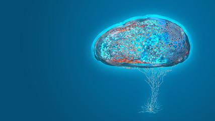 Cyber brain AI futuristic interface conceptual design on digital background, 3d render