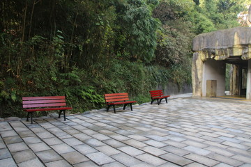 Waiting Area, wood Bench in the Park