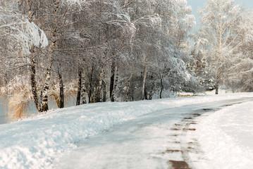 Winter landscape.Winter beauty scene