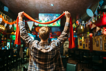 Football fan watching the match in sports bar
