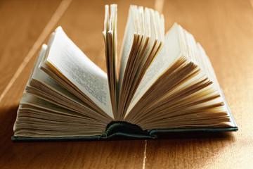 Green open book closeup