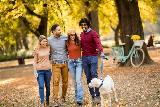 Multiracial people walking in the park with dog