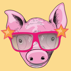 Cool pig with sunglasses. Vector illustration on yellow background