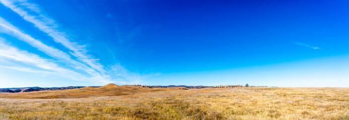 Panorama of Custar State Park, South Dakota