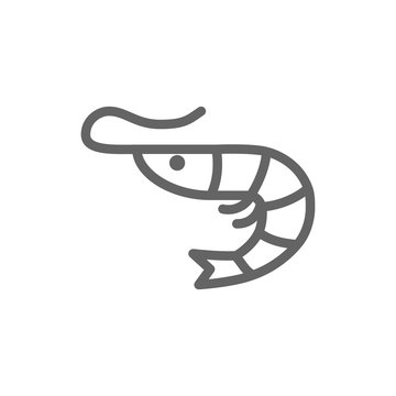 Simple shrimp line icon. Symbol and sign illustration design. Isolated on white background
