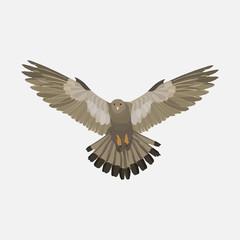realistic eagle soaring eagle, catching prey, a symbol of freedo