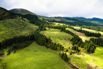 Green fields of San Miguel, Azores islands, Portugal.
