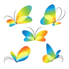 Abstract colorful different butterflies set vector