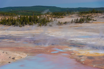 Steam rises from geothermal features in Yellowstone National Park