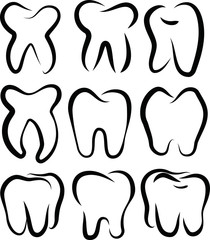Line drawing of tooth set