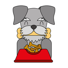 dog biting bone and bowl food