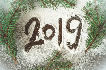 2019. Christmas tree needles on the white Background. Numbers are made of a pine tree branches. New Year Concept