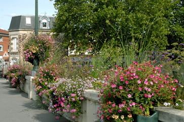 Ville d'Epernay, pont fleuri et rambarde en pierre, département de la Marne, France