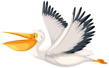 A pelican character flying