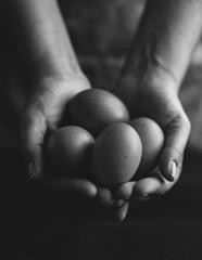 Brown organic free range eggs