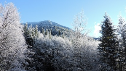 First Snow in West Central Cascades 2018 - 5