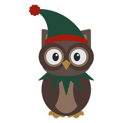 Owl in Elf Costume - Owl wearing green and red hat elf hat and neck wear
