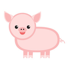 Piggy isolated on white background, vector illustration