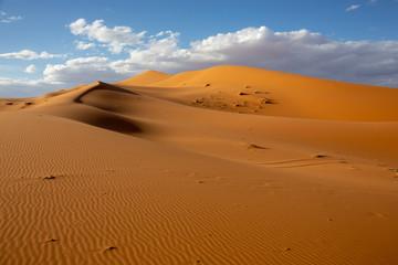 Deserts and Sand Dunes Landscape at Sunrise, Sahara