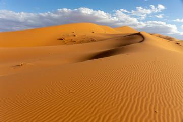 Untouched deserts and Sand Dunes Landscape at Sunrise