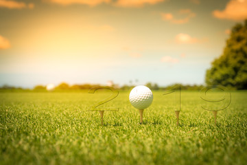 Golf sport concept Happy New Year 2019.Golf ball put on tee with blur beautiful view sunlight ray sky background.