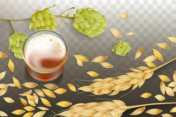 Fresh beer in glass beaker, barley or wheat ears and grains scattering around, hops flowering 3d realistic vector illustration isolated on transparent background. Craft elite alcohol drink concept